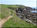 SW6911 : Coast path on the Lizard by Philip Halling
