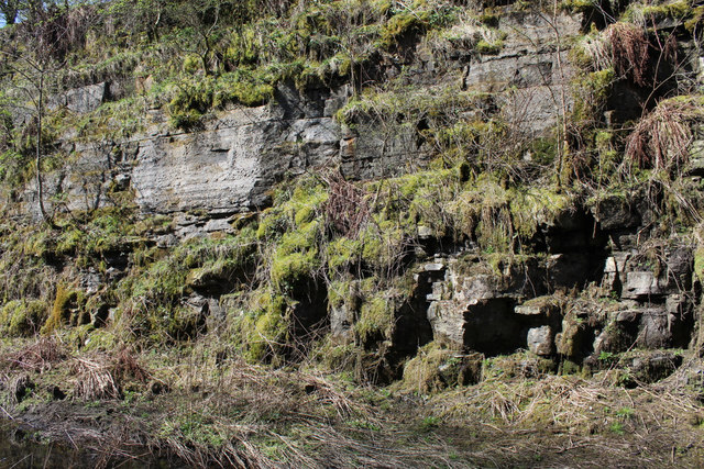 Bedrock by the Lochwinnoch Loop Line cycle path
