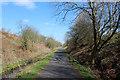 NS3357 : Lochwinnoch Loop Line cycle path by Thomas Nugent