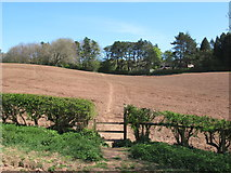 SO9875 : Stile on Brown's Way footpath, Lickey by Roy Hughes