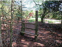 SO9875 : Another stile on Brown's Way footpath, Lickey by Roy Hughes