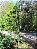 SO9875 : Brown's Way footpath sign off Monument Lane Lickey by Roy Hughes