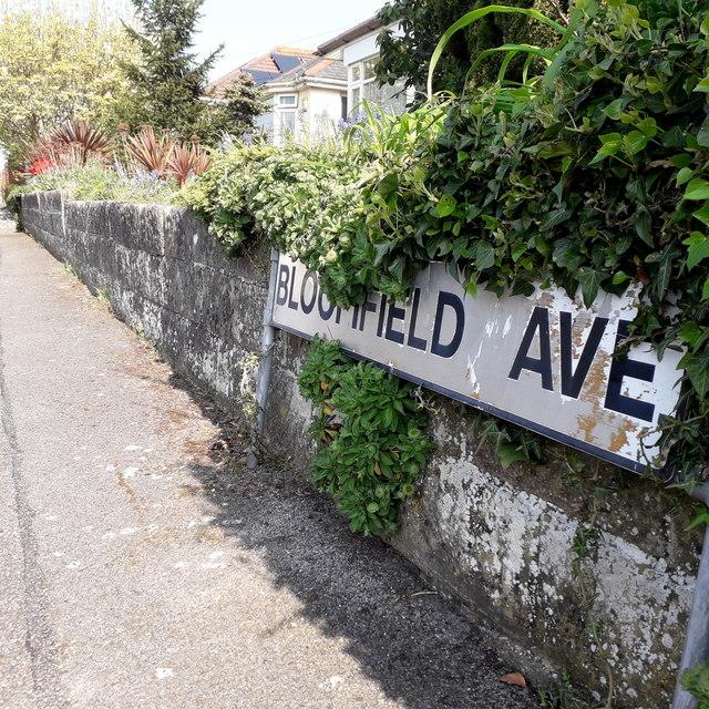 Moordown: Bloomfield Avenue