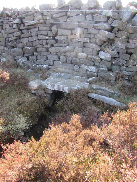 Stone Clapper over South Gill Beck