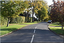 TQ0893 : Wolsey Rd by N Chadwick