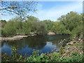 SE3521 : River Calder, downstream from Kirkthorpe weir by Christine Johnstone