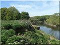 SE3621 : Entrance to Kirkthorpe Lock, Aire & Calder Navigation by Christine Johnstone