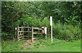 SP3211 : Kissing gate on public footpath from Wash Meadow, Minster Lovell, Oxon by P L Chadwick