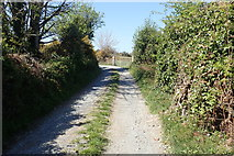 J3633 : View WNW along Newcastle's Wild Forest Lane by Eric Jones