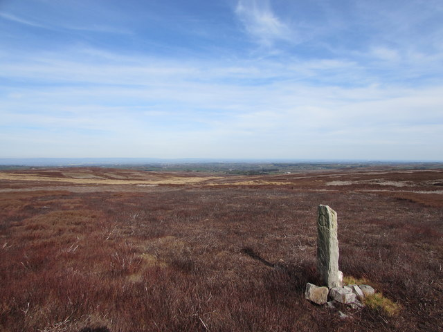 Old Boundary Stone on Carle Moor