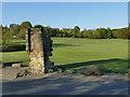 SE2536 : Vesper shadows, Kirkstall Abbey Park by Stephen Craven