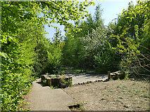 SE2635 : Kirkstall Valley Nature Reserve: sensory garden by Stephen Craven