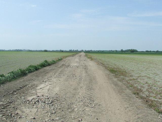 Sealodes Road