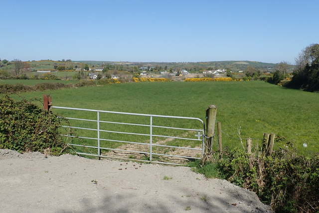 Pasture land between Wild Forest Lane and Ballyhafry Road