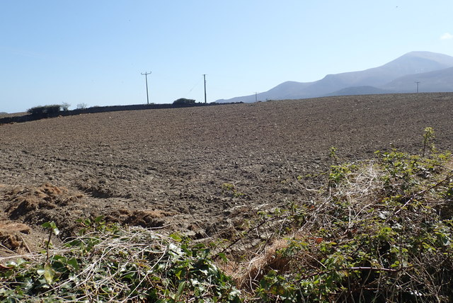 Ploughed and seeded land at the Barbican Farm