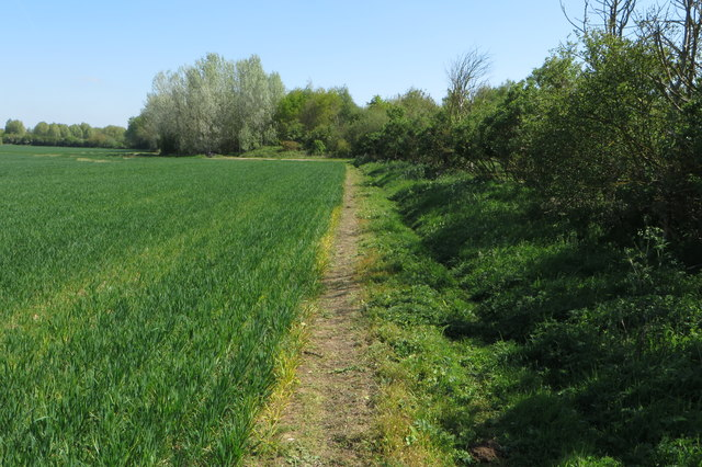 Path to the Old Covert
