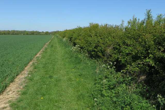 Footpath to Lower Wood