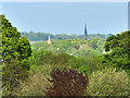 SE2734 : Gott's Park: view of the spires by Stephen Craven