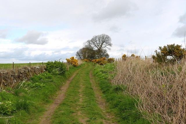 Bishop Sharp's Road