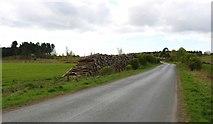 NO3206 : Pile of logs by Bill Kasman