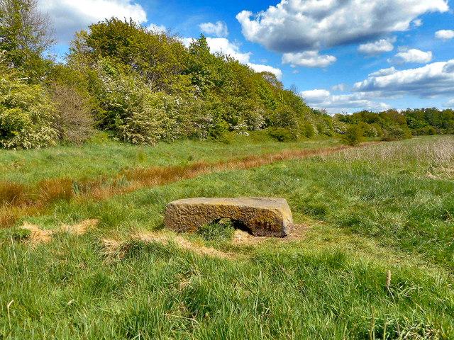 Field near the River Mersey