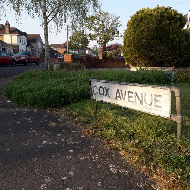 Muscliff: Cox Avenue