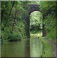 SJ6931 : Hollings Bridge No 58 in the Woodseaves Cutting by Mat Fascione