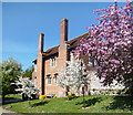 SU6491 : Blossom outside the School by Des Blenkinsopp