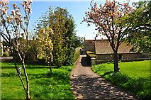 ST8080 : St Mary's Church Drive, Acton Turville, Gloucestershire 2020 by Ray Bird