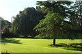 SO5476 : Sunken lawn, Henley Hall by Derek Harper
