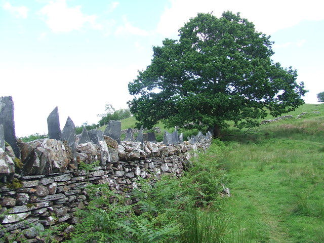 Stone Wall And Footpath