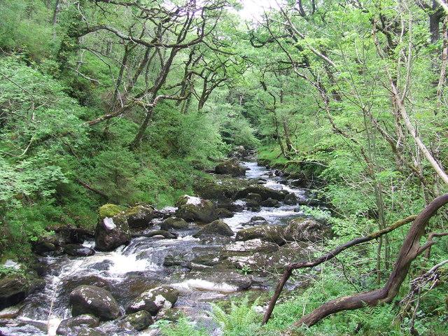 The Afon Cynfal