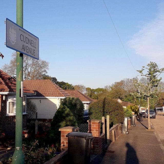 Bear Cross: Cudnell Avenue