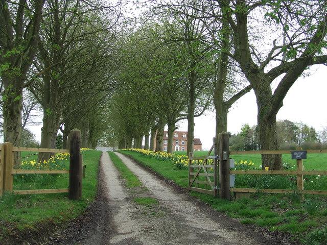 Driveway To Thisley Hall