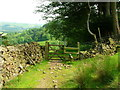 SD6448 : Stile and bridle gate by John H Darch