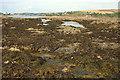 SX6543 : Wave-cut platform near Bantham Sand by Derek Harper