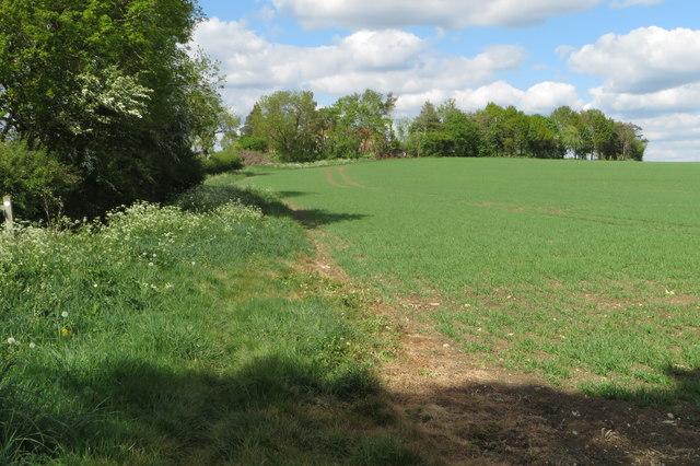 Footpath up to Grange Farm