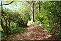 NO3901 : The Walled Garden, Silverburn Park by Bill Kasman