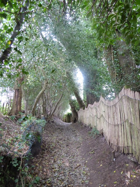 Path from Scotland Lane to Hill Road