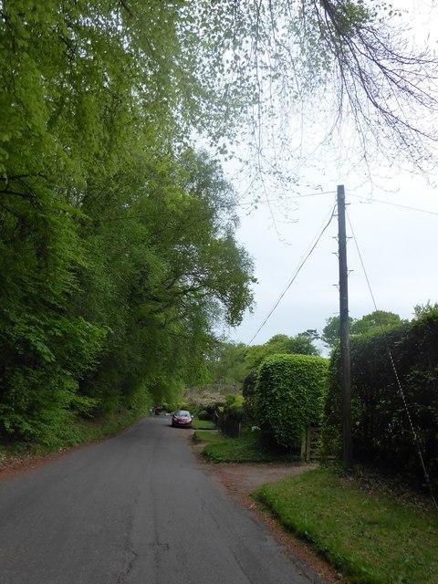 Mid section of Scotland Lane