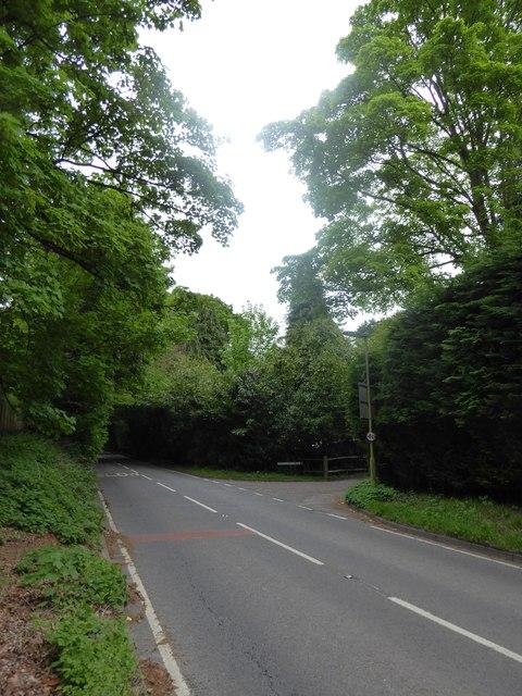 Looking north-east in Midhurst Road