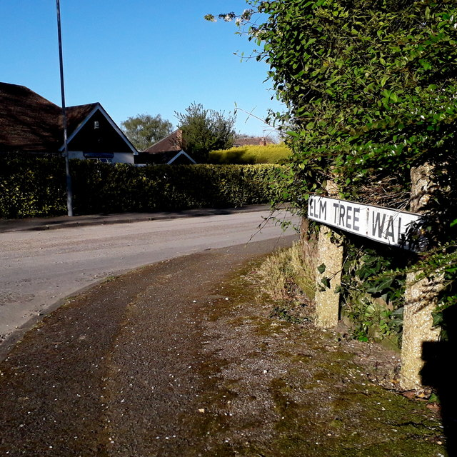 West Parley: Elm Tree Walk
