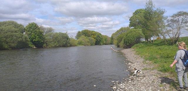 River Nith near Broomrigg