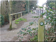 TQ0866 : Thames Path National Trail diverts from Russell Road by Sean Davis