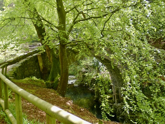 Foley's Alpine-style footbridge at Tollymore Park