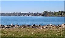NT3496 : View over Buckhaven  Bay by Bill Kasman
