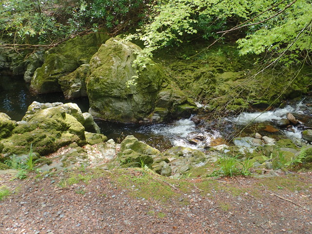 Moss covered rocks in the Shimna Gorge