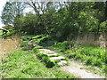 NZ3376 : Stepping Stones, Holywell Dene by Geoff Holland