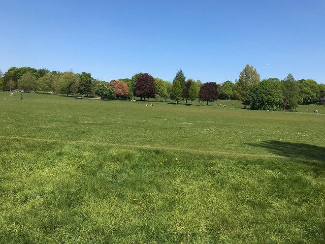 Preston Park - May 2020