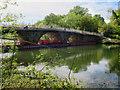 SK6273 : Clumber Bridge repairs by Andy Stephenson